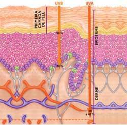 radiação UVA atinge as camadas mais profundas da pele e também causa estragos!