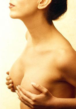 Sem dúvida as mamas são uma parte fundamental na sensualidade e beleza feminina.
